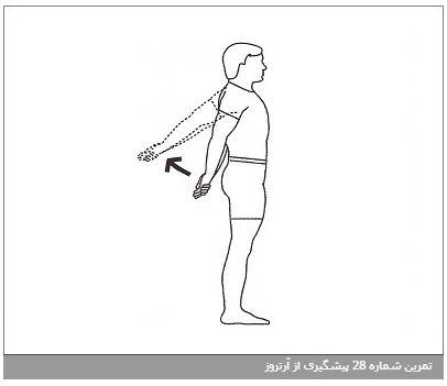 تمرین شماره 28 پیشگیری از آرتروز